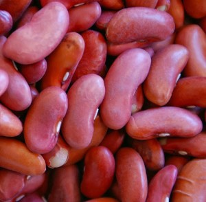 Kidney-Beans for Healthy Lifestyle
