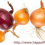 Onion-Health-Benefits