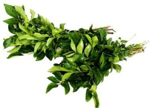Health Benifits of Curry-Leaves